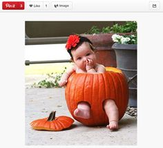Disturbing Trend: Babies In Pumpkins (via BuzzFeed). I wanted to put C in a pumpkin. Scott vetoed