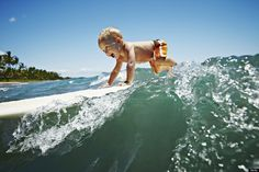 Surfing   never too young to shred