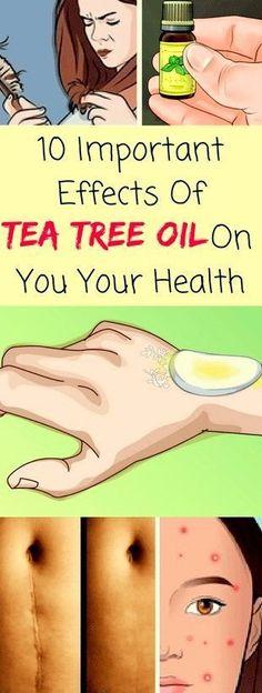 Awaken Yourself about the 7 TEA TREE Oil BENEFITS. MELALEUCA DIY recipes Awaken Yourself about MELALEUCA (Tea Tree) Essential Oil USAGE and BENEFITS