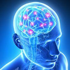 Dr. David Jernigan, Hansa Center: Lyme-Induced Leaky Brain Syndrome
