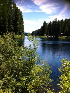 Coldwater cove campground on clear lake oregon for Clear lake oregon fishing