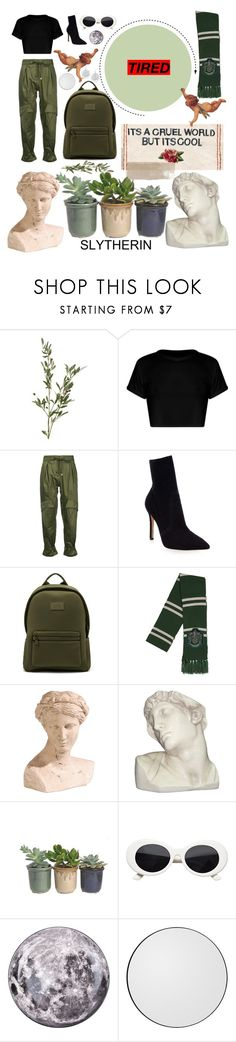 """slytherin"" by kiwistacey ❤ liked on Polyvore featuring Roberto Cavalli, Gianvito Rossi, Ethan Allen, House Parts, Hostess, Diesel, AYTM and Jardin"