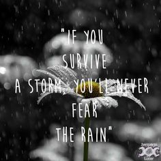 Pagan quotes - Nature is my church – Pagan inspiring images and quotes- Nature is my church - 07 If you survive a storm, you& never fear the rain- Pagan Quotes, Storm Quotes, Mother Nature Quotes, Quotes About Strength, Quotes About Rain, Happy Rain Quotes, Survivor Quotes, Powerful Quotes, Love Words