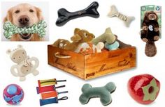 Reviewers needed to review Dog Toys