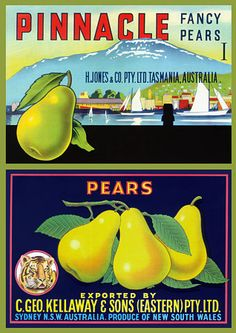 Venus Art Prints - Australia's finest collection of Australian vintage travel posters and prints Advertising Pictures, Advertising Poster, Retro Ads, Vintage Advertisements, Vintage Labels, Vintage Ads, Vintage Travel Posters, Retro Posters, Vegetable Crates