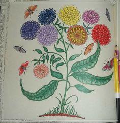 Floresdo Livro #JardimSecreto Pintado por minha Mãe