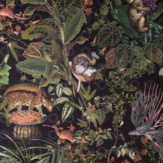 Moooi pays tribute to extinct animals with range of wallpaper and carpets Animal Wallpaper, Dark Wallpaper, Home Wallpaper, Extinct Animals, Creature Feature, Animal Design, Designer Wallpaper, Creatures, Decoration