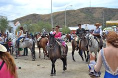 A real party, full of food, drink, music, dancing, horses, donkeys and oxen. Andalusia, Donkeys, Countryside, Dancing, Horses, Drink, Music, Party, Animals