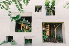 The Window House / FORMZERO