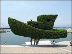 amazing topiary art 13 When Im old and crazy Im going to have topiary art everywhere Photos) Topiary Garden, Garden Art, Garden Design, Garden Hedges, Tree Sculpture, Garden Sculpture, Sculptures, Outdoor Art, Outdoor Gardens
