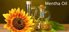 KM Chemicals is the brand that is known widely for offering an extensive range of organic products that you will for their healing powers and Ayurvedic benefits. Being the most demanding Essential Oils Manufacturers, we are committed to deliver bulk orders as per the client's requirements throughout the various regions of India and all over the world.
