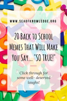 Back to school time isn't a teacher's favorite time of the year, here are a list of 20 real-life TRUE moments that all teachers could relate to! Click through to laugh and read 20 funny back to school quotes that will make teachers say SO TRUE! Back To School Quotes Funny, Back To School Quotes For Teachers, Back To School Meme, Back To School Teacher, School Memes, Beginning Of School, Quotes For Kids, Funny Quotes, School Stuff