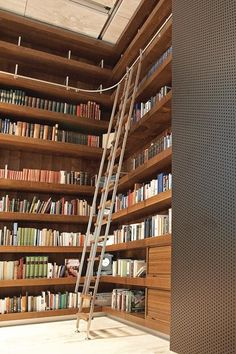 rolling closet ladders - Google Search