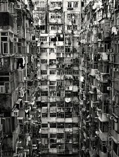 hong kong. by laurenannporter