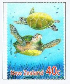 Stamp: Green Sea Turtle (Chelonia mydas) (New Zealand) (Year of the Snake Mi:NZ 2386 Year Of The Snake, Two Of A Kind, Green Turtle, Stamp Printing, Vintage Stamps, Stamp Collecting, Marine Life, New Zealand, Stock Photos