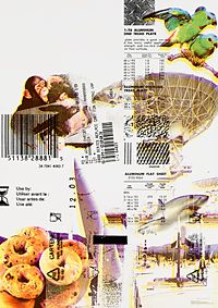 グラフィックトライアル2007|平林奈緒美|GA info.
