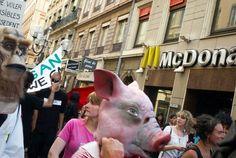 Le député UDI Yves Jégo réclame des plats alternatifs pour les élèves ne consommant pas de viande. Il se heurte au maire de Chalon-sur-Saône, Gilles Platret, qui avait annoncé en mars la fin du repas de substitution dans sa commune.