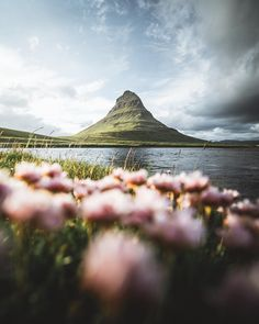 The one and only, the Kirkjufell mountain. Iceland is full of beautiful places for hiking, but this one should totally be on your Iceland travel bucket list! Vacation Captions, Landscape Photography, Travel Photography, It's All About Perspective, Freedom Travel, Iceland Photos, Good Vibe, Le Shop, Mountain Photos