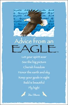 Advice from an Eagle Frameable Art Postcard