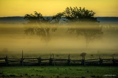 Colours of a Foggy Sunrise - by Mikell Herrick