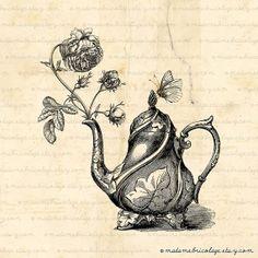 Teapot Rose Butterfly,