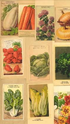 French seed packets