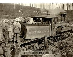 Pondering an Accident on the Benson Logging Train - c. 1900