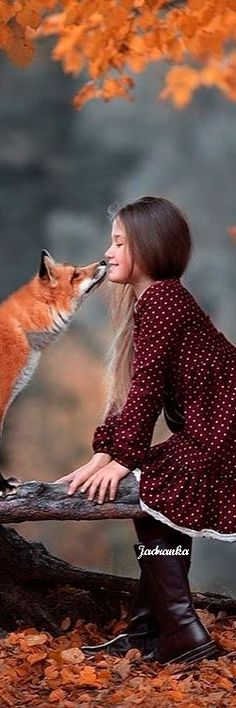 Lovely Smile, Beautiful Friend, Most Beautiful, Cunning Fox, Fantastic Fox, Fall Pictures, Hello Autumn, Love Images, Autumn Theme