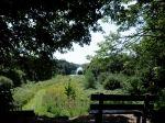 """Het Kuinderbos ligt in het noordoosten van de gemeente. In het bos vindt u wandel-, natuur- en fietspaden, een natuurcamping, dagcamping, speelweiden, picknickplaatsen, kampvuurplaatsen en historische ruïnes. Er zijn wandelroutes, een """"natte neuzenpad"""" en hondenlosloopgebied, ATB-route, de Kuinderbosfietsroute en een ruiter- en menroute. Het bos strekt zich uit over de grens met de provincie Overijssel. Zo bent u maar enkele kilometers verwijderd van het Nationaal park Weerribben-Wieden."""