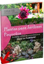 Fotos de Diseño de Jardines Pequeños | Decoración de Jardines Pequeños y Grandes
