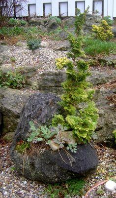 mulch of pea gravel