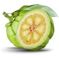 Garcinia Cambogia Extract is often a tamarind fruit that grows in tropical areas. The fruit has been used for hundreds of years in Asia in cooking foods so that as natural medicine. The real power of Garcinia Cambogia Extract is discovered recently by researchers and scientists.