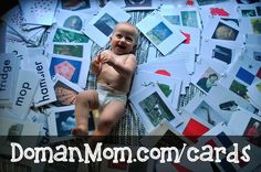 """Here's my collection of pictures cards (also called """"bits"""", """"bits of intelligence"""", """"encyclopedic knowledge cards"""", or """"flash cards""""). They are inspired by Glenn Doman'sHow to Multiply Your Baby's..."""