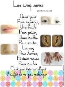 Study French, French Kids, Learn French, French Flashcards, French Worksheets, French Teaching Resources, Teaching French, French Language Lessons, French Lessons