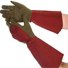 West County Gauntlet Gloves - Witherspoon Rose Culture