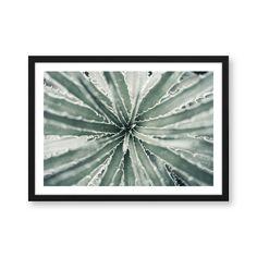 Botanik Artprint