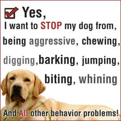 Takes care of all your dog's behviour problems