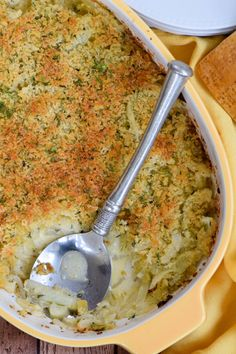 Fennel Gratin with Parmesan: a perfect fall side dish for holidays and everyday. #theonlyparmesan