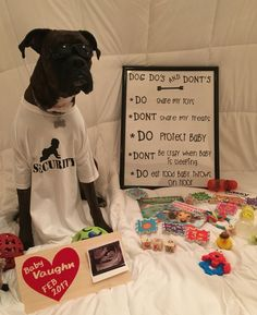 Cute baby announcement idea with dog  #baby #babyannouncement #boxer First Baby Announcements, Pregnancy Announcement To Parents, Baby Announcement With Dogs, Baby Surprise Announcement, Pregnancy Photos, Halloween Baby Announcement, Baby Photos, Surprise Baby, Pregnant Dog