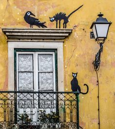An unexpected meeting | Cats and bird painted on a house wall in Leiria, Portugal