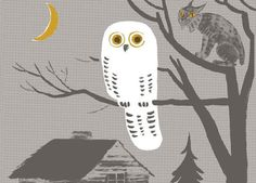 owl by Dahlov Ipcar