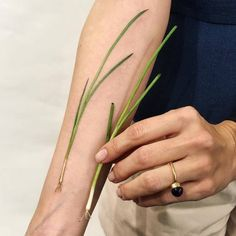 """Green onion tattoo (in Russian """"лук"""" [luk]) in honor of son named Luka. Not usual, delicate and symbolic tattoo. Watch Tattoos, Time Tattoos, Body Art Tattoos, Sleeve Tattoos, Tatoos, Tattoo Life, Tattoo On, Essen Tattoos, Koch Tattoo"""