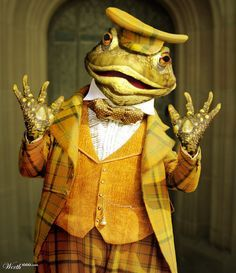 toad of toad hall costume hire - Google Search