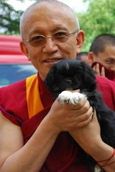 Tibetan spaniel (and Rinpoche Gonsar).