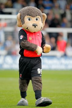 Angus the Hartlepool mascot before the preseason friendly between... ニュース写真 452598786