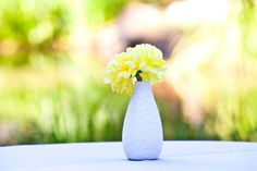 @Lynette GaitanI have like 8 vases that I could do something like this with