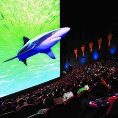 Cine gratuito en 3D en la delegación Cuauhtémoc - http://notimundo.com.mx/mexico/cine-gratuito-en-3d-en-la-delegacion-cuauhtemoc/10563