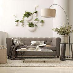 комнатные растения,как оживить интерьер с помощью комнатных растений,выносливые комнатные растения,комнатные растения при плохом освещении,драцена,сансевиерия,фикус,филодендрон,мята,бегония,адиантум,оформление квартиры с помощью комнатных растений