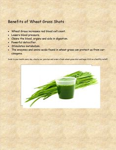 Benefits of Wheat grass shots! Stop by Wild by Nature for your daily shot!