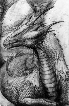 Черно-белый эскиз дракона